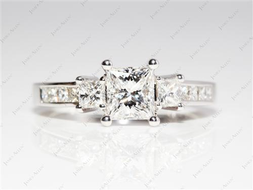 White Gold 1.02 Princess cut Engagement Ring With Side Stones