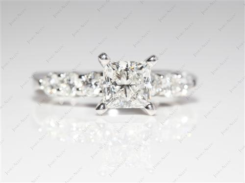 Platinum 1.01 Princess cut Engagement Ring Side Stones